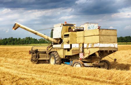 combine: Combine harvester in Wheat field.