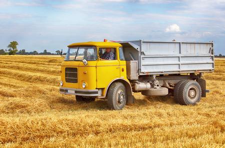 ciężarówka: Ciężarówki, ciężarówki na polu
