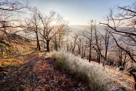 zvýšil: Zmrazit podzimní svítání, skály pokryté čerstvým práškovým sníhem. Kamenný horninový vrchol vzrostl z mlhavého údolí. Zimní mlhavý východ slunce v krásné skalní říši.