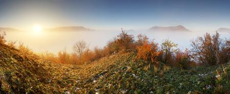 Slovakia forest autumn panorana landscape with mist in mountain, Manin