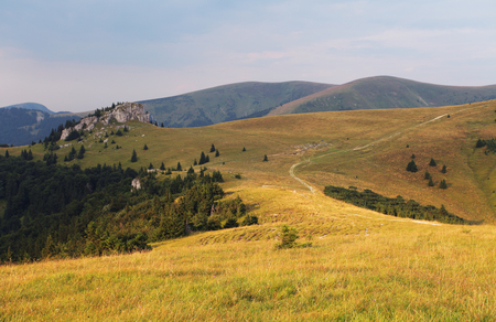 Meadow and forest in Fatras mountains