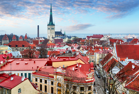 View top on historic centre of Tallinn in the Estonia. Red roofs of the old houses of the European city Tallinn. Roof with wings. Reklamní fotografie