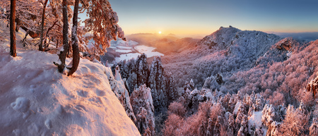 Winter mountain landscape with snow forest