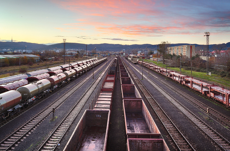 Cargo train platform at sunset with container Reklamní fotografie