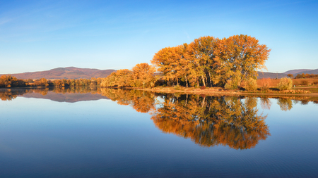 Autumn colorful trees under morning sunlight reflecting in tranquil river 写真素材