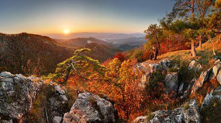 Autumn rural forest landscape at sunset