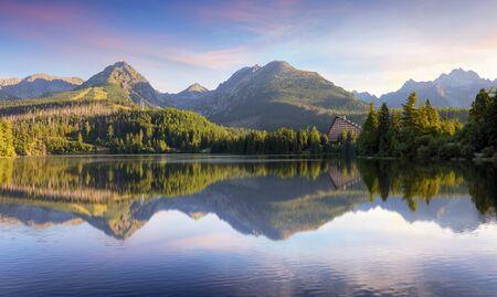 Tatras green forest - Strbske pleso, Slovakia