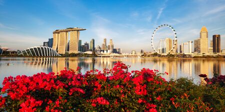 Singapore city panorama at day with flowers