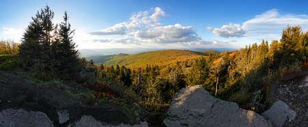 Slovakia mountain - Vtacnik peak with forest