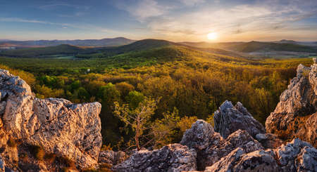 Panorama of rock and forest landscape