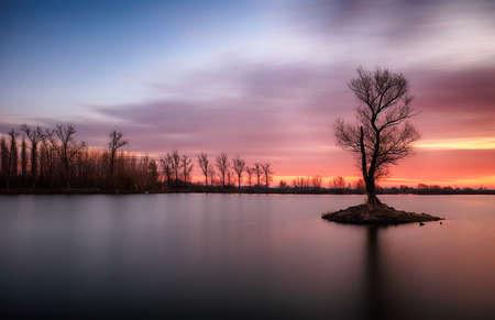 Lake with alone tree at dramatic sunset
