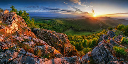Forest and mountain at sunset - landscape panorama Фото со стока