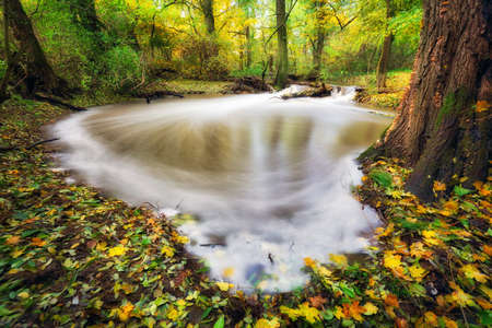 Autumn colors by the river with yellow leaves and forest Reklamní fotografie - 159255529