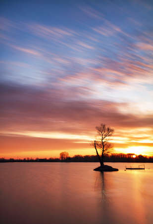 Pond at sunset with silhouette tree, water landscape