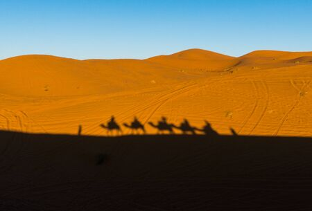 Camels caravan shadows projected over Erg Chebbi desert sand dunes at Morocco