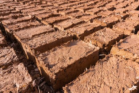 Paving stones clay bricks, hand-made exposed to the sun to dry in Morocco