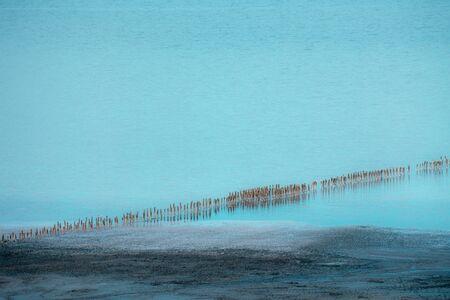Extraction of salt in the estuary. Salt pillars. Deadpan composition. Wooden poles in cyan water. Banco de Imagens