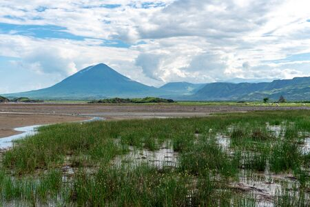 Pink lesser Flamingos at Lake Natron with Ol Doinyo Lengai volcano on background in Rift valley, Tanzania Stock Photo