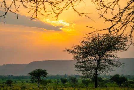 Spectacular Ngoro Ngoro sunset over the African bush