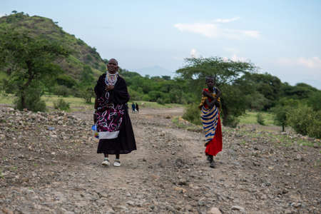 TANZANIA, EAST AFRICA - JANUARY 2020: Two Masai Women in traditional clothes and weapons are walking in the savannah by the Gravel Road Surrounded with Green acacia Trees Editoriali