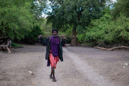 TANZANIA, EAST AFRICA - JANUARY 2020: Older Maasai man in traditional clothes and weapons are walking in the savannah by the Gravel Road Surrounded with Green acacia Trees