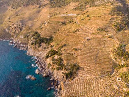 Aerial View on Banana Plantations Terraces on the Slopes of Mountains At Mediterranean Near the ancient city Antiochia ad Cragum near Gazipasa, Antalya, Turkey 版權商用圖片