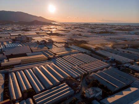 Aerial Shot of Endless greenhouses at Sunrise in Demre, Turkey 版權商用圖片