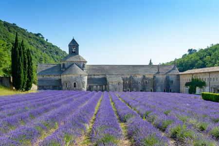 senanque: Abbaye Notre-Dame de Senanque