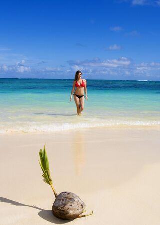 A beautiful young woman in a bikini at a tropical beach in Hawaii Stock Photo - 4379218