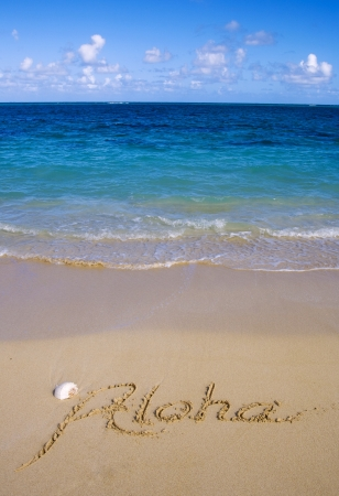 aloha: aloha written in the sand of a Hawaiian beach