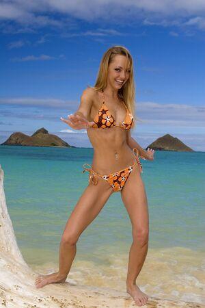 driftwood: beautiful young woman on an Oahu beach in Hawaii