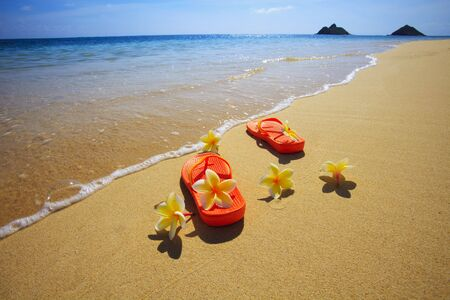 Sandals and flowers on a Hawaii beach by the water's edge Stock Photo