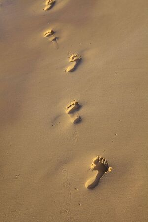 Footprints in the sand on a beach in Hawaii in the late afternoon photo