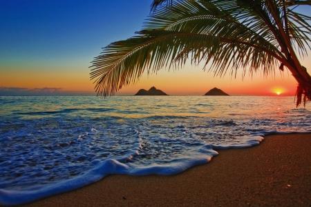 hawai: La salida del sol del Pac�fico en la playa de Lanikai, Hawaii