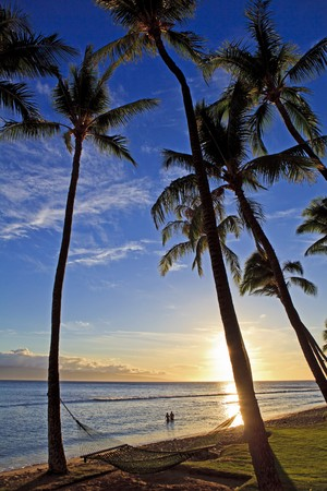 pacific sunset at kaanapali beach on maui  photo