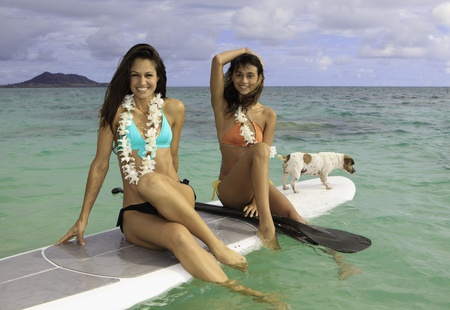 lei: two girls on paddle boards with their dog Stock Photo