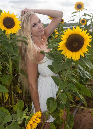 beautiful blond woman in a sunflower field Stock Photo