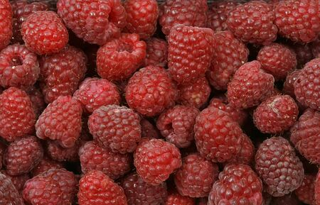 Red seen raspberries in the basket