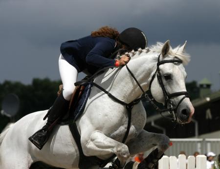 salto de valla: Espect�culo de salto de caballo