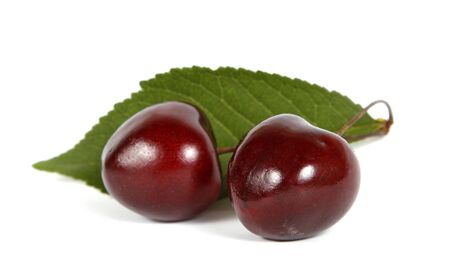 Two red cherries on the white background