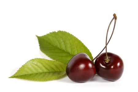 cereza: Dos cerezas de color rojo sobre el fondo blanco