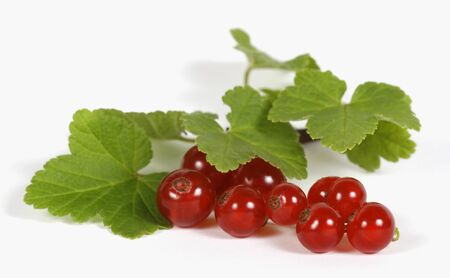 withe background: Redcurrants on the withe background