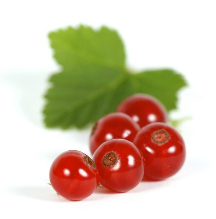 withe: Redcurrants on the withe background