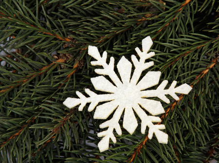 relating: Snowflake relating to twigs of the spruce Stock Photo