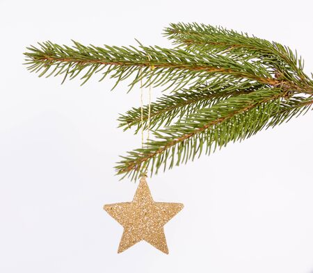 Twig of the spruce with gold star Stock Photo