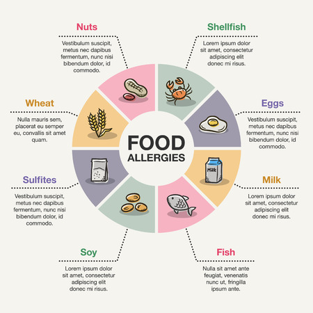 食物アレルギーのベクター インフォ グラフィック テンプレートです。  イラスト・ベクター素材