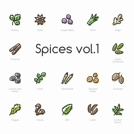 Spices line icons isolated on light background. Contains such icons as cinnamon, arugula, cloves, chive, cumin and more.
