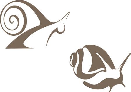 snail vector sign.