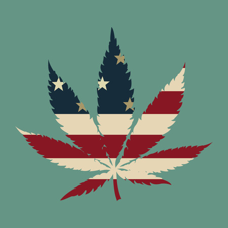 usa flag: Marijuana leaf with the USA flag colors vector illustration