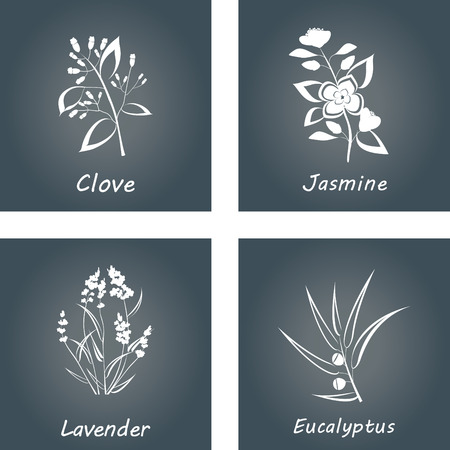 Collection of Herbs. Labels for Essential Oils and Natural Supplements. Lavender Eucalyptus Jasmine Clove